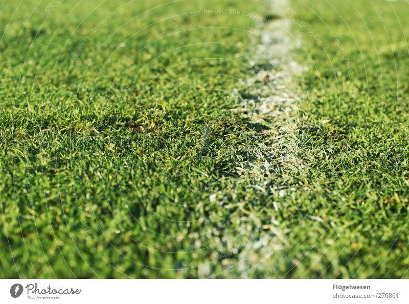 Die Sommerpause ist fast vorbei! Freizeit & Hobby Spielen Sport Ballsport Torwart Schiedsrichter Publikum Fan Tribüne Sportveranstaltung Fußball Sportstätten