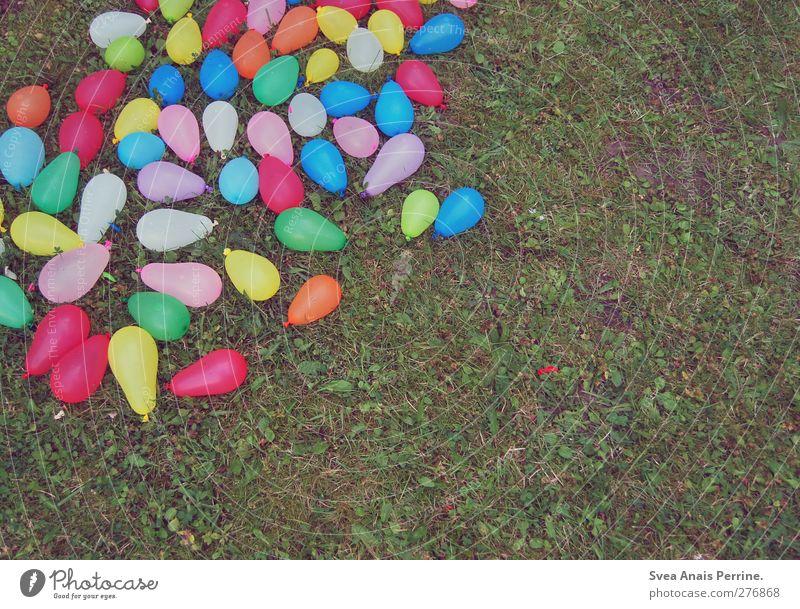 wasser bomben schlacht ahoi! Sommer Schönes Wetter Gras Wiese wasserbombe wasserbomben Luftballon liegen Erfolg Freundlichkeit Fröhlichkeit klein nass natürlich