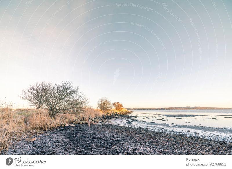Küstenlinie in der Morgensonne mit Frost schön Ferien & Urlaub & Reisen Strand Meer Winter Natur Landschaft Himmel Wolken Horizont Wetter Baum Wald Felsen See
