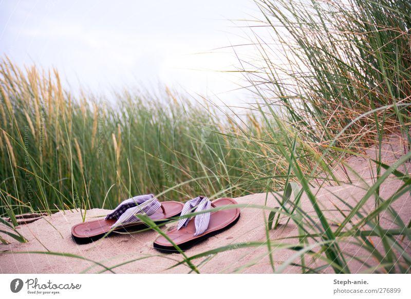 Einsame Schuhe Himmel Strand Wolken Erholung Leben Gras Glück Sand Mode liegen Zufriedenheit Schuhe stehen schlafen Hoffnung Neugier