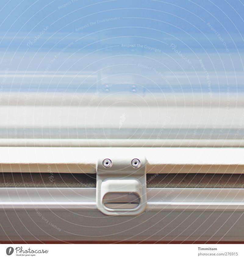 Der gute Geist. blau Freude Fenster Holz Glas Häusliches Leben einfach Kunststoff Geister u. Gespenster Überraschung Wolkenloser Himmel Griff Dachfenster