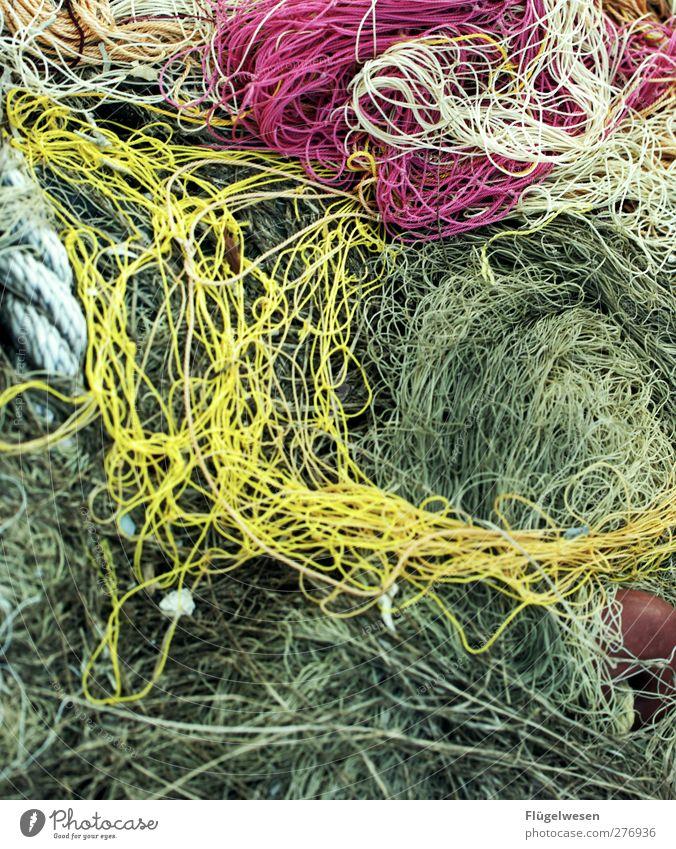 Netzwerkerkennung Fischereiwirtschaft Fischernetz netzartig Farbfoto Außenaufnahme Tag