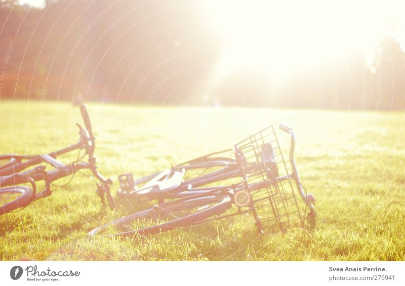 sonntags park! Natur Schönes Wetter Gras Park Wiese Fahrrad liegen hell Wärme Farbfoto Außenaufnahme Menschenleer Licht Lichterscheinung Sonnenlicht