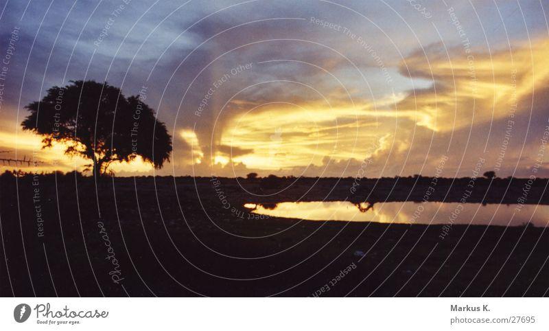 Sonnenuntergan am Wasserloch (1) Himmel Baum Sonne ruhig Graffiti München Namibia Farbenspiel Wasserstelle Etoscha-Pfanne