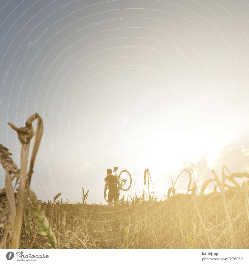 im zeichen der ringe Mensch Natur Mann Sommer Pflanze Sonne Erwachsene Landschaft Ferne Umwelt Leben Freiheit Stil Gesundheit Körper Feld