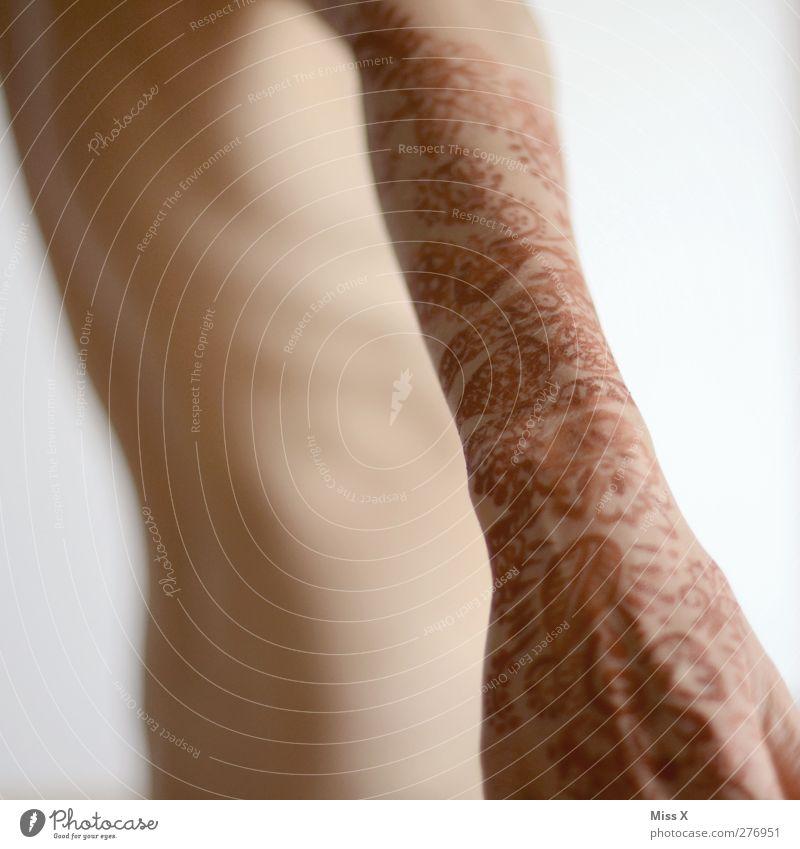 Nicht nackt Mensch nackt Arme Haut Zeichen Tattoo exotisch Ornament Blumenmuster Hennamalerei Henna Nackte Haut henna-rot