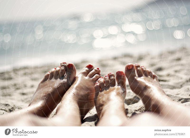 es glitzert. Erholung ruhig Sommer Sommerurlaub Sonne Strand Meer Jugendliche Leben Fuß Zehen 2 Mensch genießen liegen blau Zufriedenheit Gelassenheit