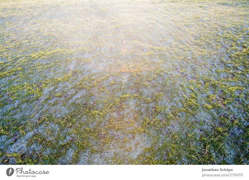 WWWW II Umwelt Natur Landschaft Winter Schönes Wetter Park Wiese ästhetisch Zufriedenheit Lebensfreude Frühlingsgefühle Schnee Rasen Gras grasgrün Tau