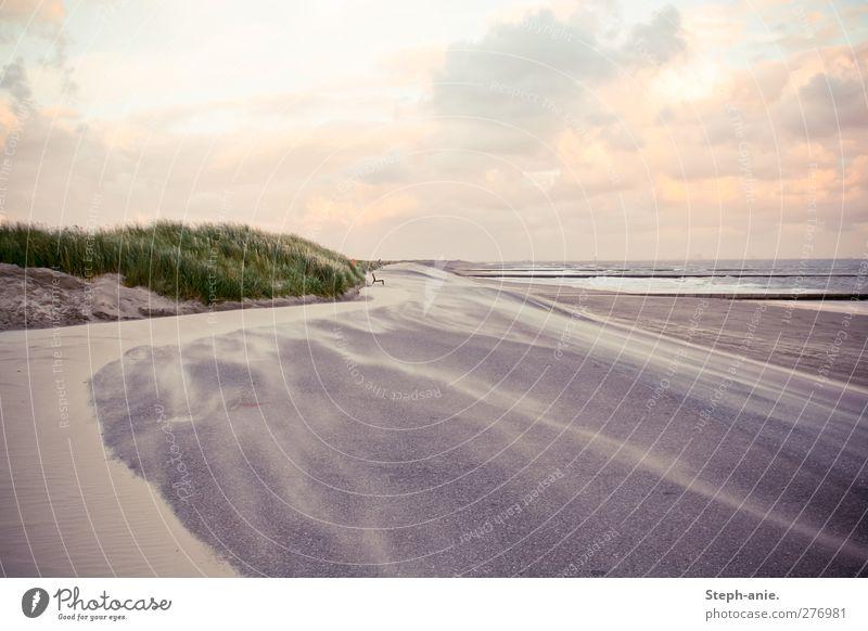 Magie Sand Wasser Himmel Wolken Horizont Sonnenaufgang Sonnenuntergang Schönes Wetter Wind Gras Wellen Küste Strand Nordsee Ostsee Meer Insel Borkum beobachten