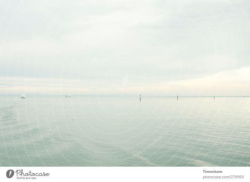 Graue Weite. Ferien & Urlaub & Reisen Sommer Wassersport Segeln Umwelt Natur Himmel Wolken ästhetisch hell grau weiß ruhig Ferne Bodensee Segelboot Wellen