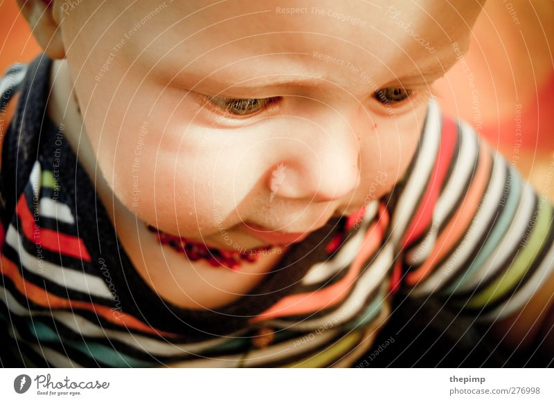 Jona maskulin Baby Kindheit Gesicht 1 Mensch 0-12 Monate niedlich Glück Lebensfreude Neugier Freude lernen Wachstum Farbfoto Porträt Blick nach unten