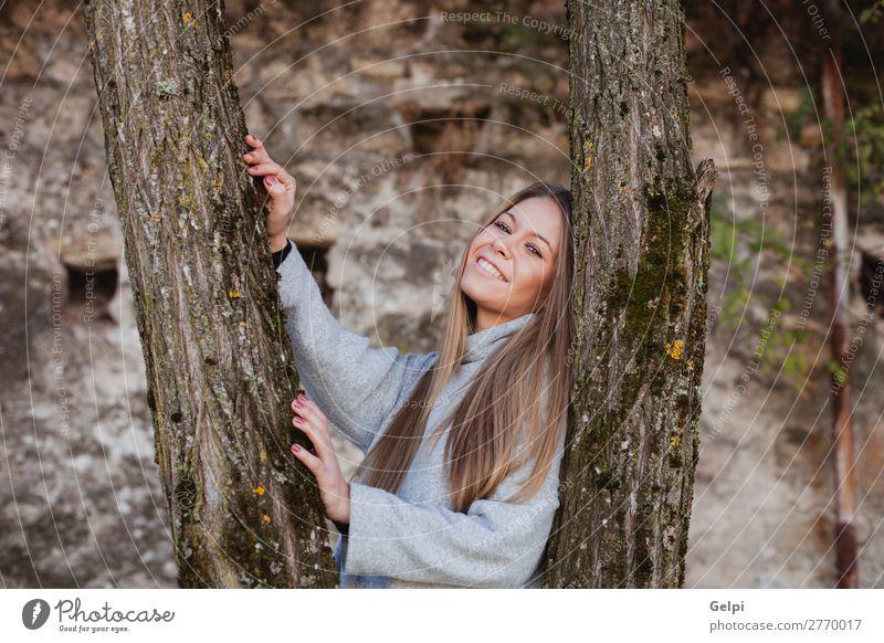 Schöne Frau neben dem Stamm eines Baumes Lifestyle Glück schön Gesicht Freiheit Sommer Mensch Erwachsene Natur Herbst Wind Park Wald Mode blond Lächeln Erotik