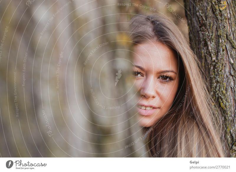Schöne Frau hinter dem Stamm eines Baumes Lifestyle Glück schön Gesicht Freiheit Sommer Sonne Mensch Erwachsene Natur Herbst Wind Park Wald Mode blond Lächeln