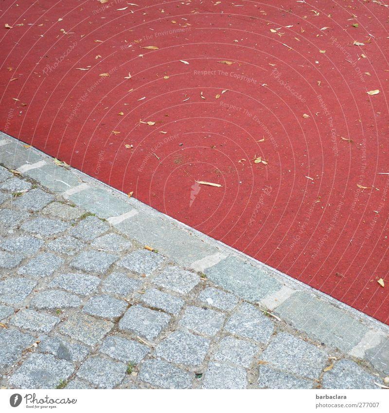 Der rote Platz Stadt Farbe Blatt Umwelt Wege & Pfade grau Stein Linie ästhetisch Bodenbelag Kultur Bürgersteig diagonal Pflastersteine