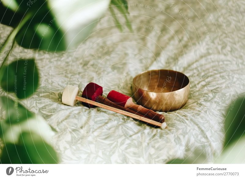 Singing bowl in a cozy home Lifestyle Gesundheit Behandlung harmonisch Wohlgefühl Zufriedenheit Sinnesorgane Erholung ruhig Meditation Klangschale