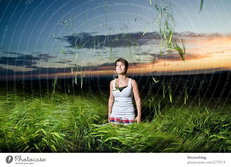 Alles Gute kommt von oben Jugendliche blau grün Freude Erwachsene Leben Junge Frau Bewegung Freiheit Glück Feld 18-30 Jahre fliegen frei stehen Abenteuer