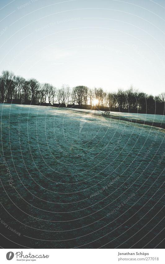 WWWW IV Umwelt Natur Landschaft Schönes Wetter Eis Frost Schnee Park Wiese Gefühle Zufriedenheit Lebensfreude Außenaufnahme Spaziergang Berghang Baum kalt