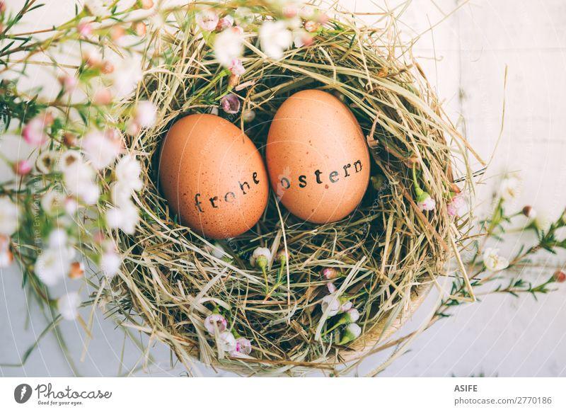 Ostereier mit gestempeltem Grußtext in Deutsch schön Handarbeit Dekoration & Verzierung Ostern Blume Gras Holz Ornament lustig natürlich niedlich Originalität