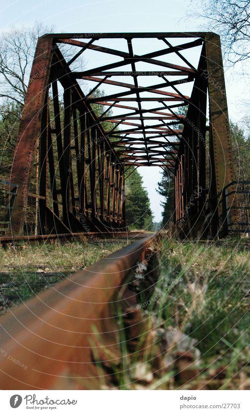 Old Railway Bridge Einsamkeit Wald Eisenbahn Brücke Eisenbahnbrücke Bahnbrücke