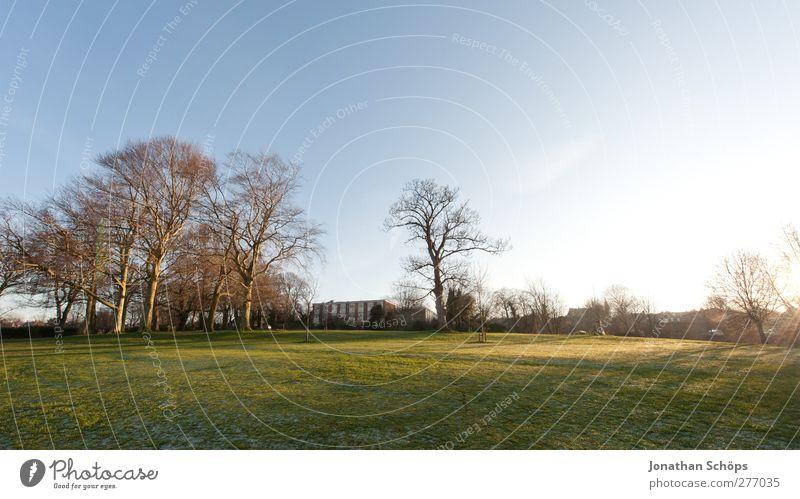 WWWP Umwelt Natur Landschaft Wolkenloser Himmel Horizont Sonne Frühling Winter ästhetisch Gefühle Zufriedenheit Lebensfreude Spaziergang Außenaufnahme England