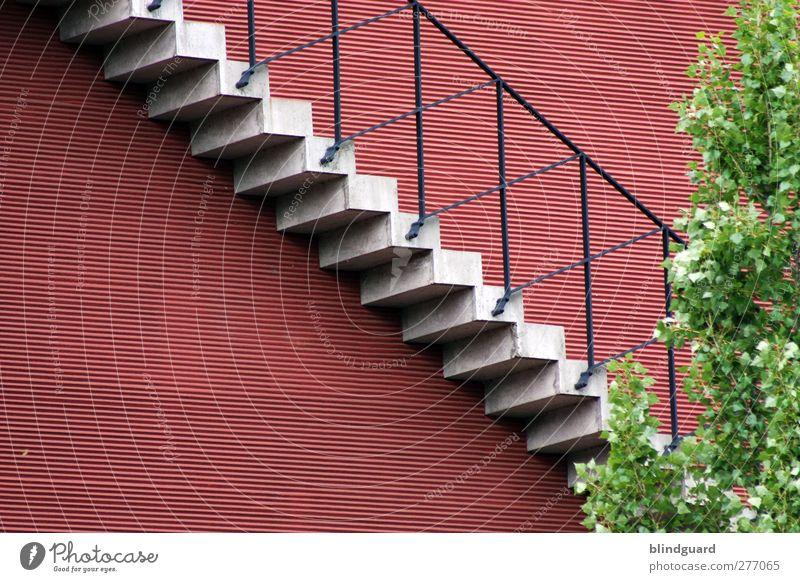 Stairway grün Stadt Baum rot Blatt schwarz Haus Wand Architektur grau Mauer Stein Gebäude Metall Fassade Treppe