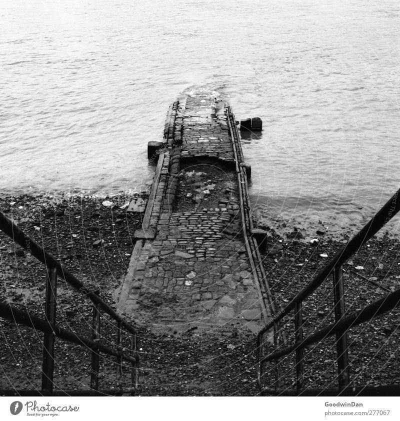 Thames. Natur Stadt alt Umwelt Stimmung Treppe trist authentisch Fluss Unendlichkeit trocken London Themse Gefühle