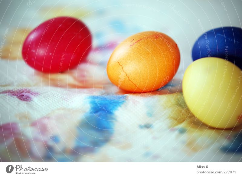 Ei Ei Ei Lebensmittel Ernährung Ostern rund blau mehrfarbig gelb rot Osterei Osternest orange 4 färben Farbstoff Farbenspiel bemalt Tradition trocknen