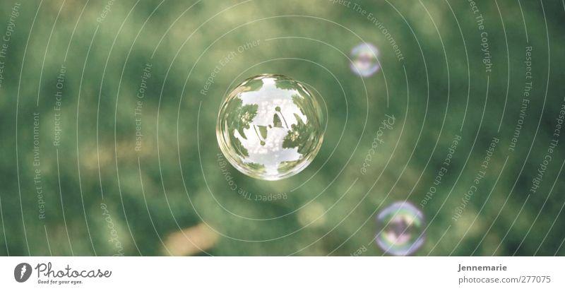 Seifenblasen Natur Frühling Sommer Gras Kugel atmen genießen Spielen ästhetisch weich grün Farbfoto Außenaufnahme Menschenleer Textfreiraum links