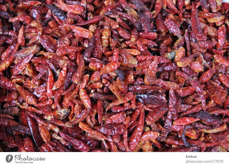 rot Lebensmittel Ernährung Gemüse Kräuter & Gewürze Bioprodukte Vegetarische Ernährung