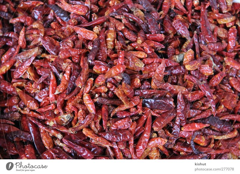 trocken, rot und würzig Lebensmittel Gemüse Kräuter & Gewürze Ernährung Bioprodukte Vegetarische Ernährung Farbfoto mehrfarbig Experiment abstrakt Muster