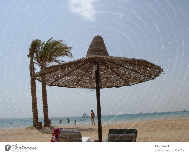 Urlaub Himmel Meer Ferien & Urlaub & Reisen Erholung stehen München Palme