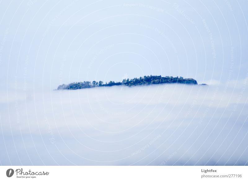 Über den Wolken muss die Freiheit... Natur Landschaft Pflanze Luft Himmel Klima Klimawandel Nebel Baum Engel ästhetisch Unendlichkeit blau Gefühle vernünftig