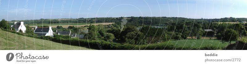 Bretagne-Panorama Natur Himmel Baum See Pflanze