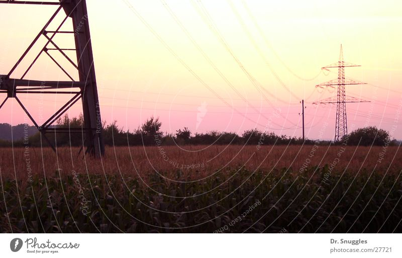 Rosa Strom Elektrizität Strommast rosa Sonnenuntergang Rheinebene Wörth am Rhein Rheinland-Pfalz Elektrisches Gerät Sommer Himmel Maximiliansau Hagenbach Kabel