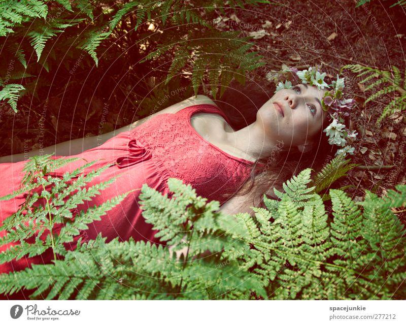 In the woods Mensch maskulin Mann Erwachsene 1 18-30 Jahre Jugendliche Natur Erde Farn Grünpflanze Wald liegen außergewöhnlich dunkel gruselig grün rot Kleid
