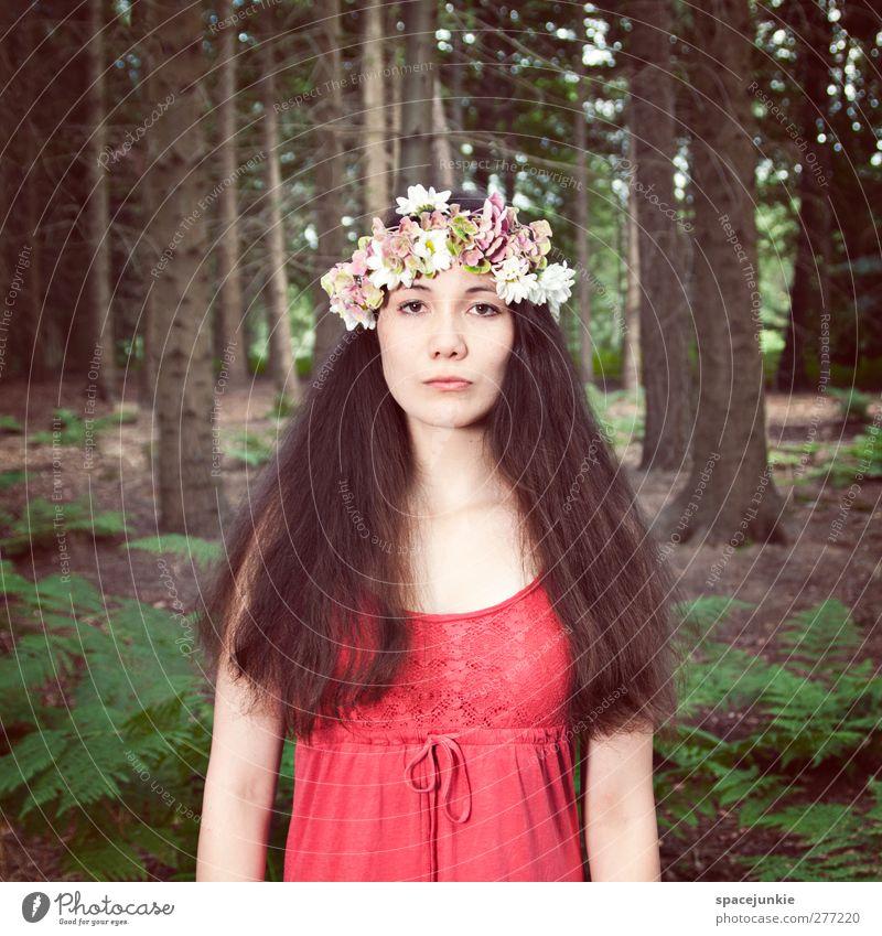 Follow me Mensch feminin Junge Frau Jugendliche Erwachsene 1 18-30 Jahre Natur Landschaft Baum Sträucher Farn Wald brünett langhaarig Blick außergewöhnlich dünn