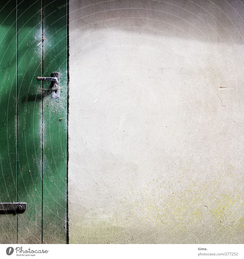 Whiteboard (old style) alt grün Haus Wand Holz Mauer Tür Fassade authentisch fest Hütte Verfall schäbig Putz Bildausschnitt Unbewohnt