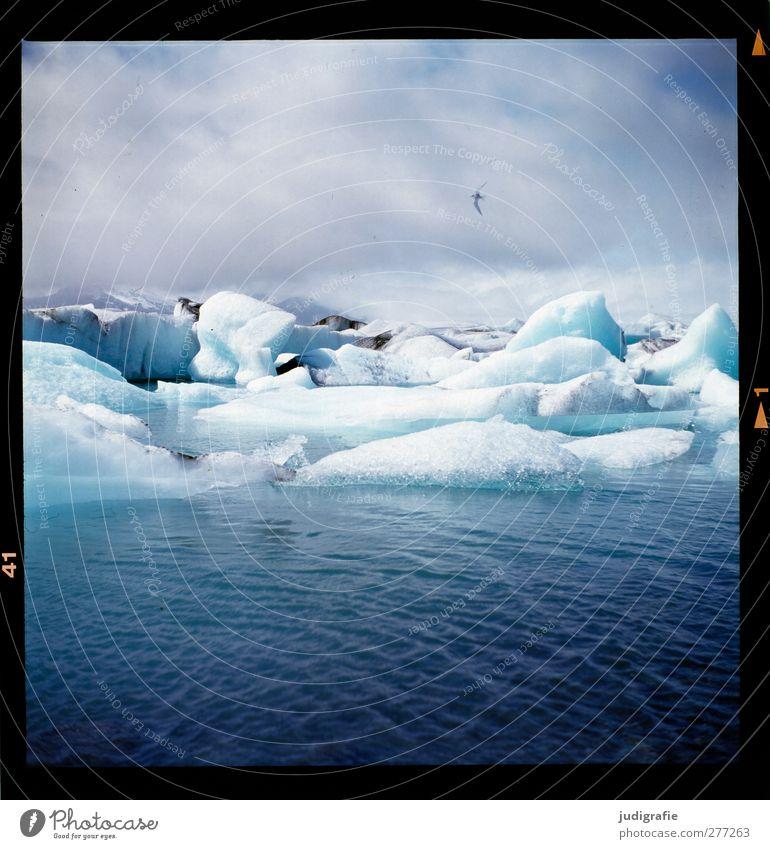 Island Umwelt Natur Landschaft Urelemente Wasser Himmel Wolken Klima Eis Frost Gletscher See Jökulsárlón kalt natürlich blau Stimmung Wandel & Veränderung