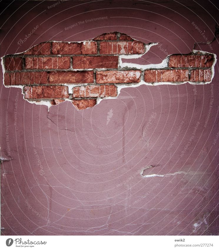 Casa Mauer Wand Fassade Backstein alt bedrohlich trashig violett rot schwarz weiß chaotisch Desaster Vergänglichkeit Zerstörung Loch Verfall Putzfassade
