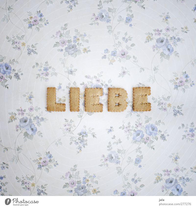 freie liebe für alle! Liebe Glück Schlagwort Lebensmittel Ernährung Schriftzeichen Grafik u. Illustration Lebensfreude Typographie Süßwaren lecker Wort
