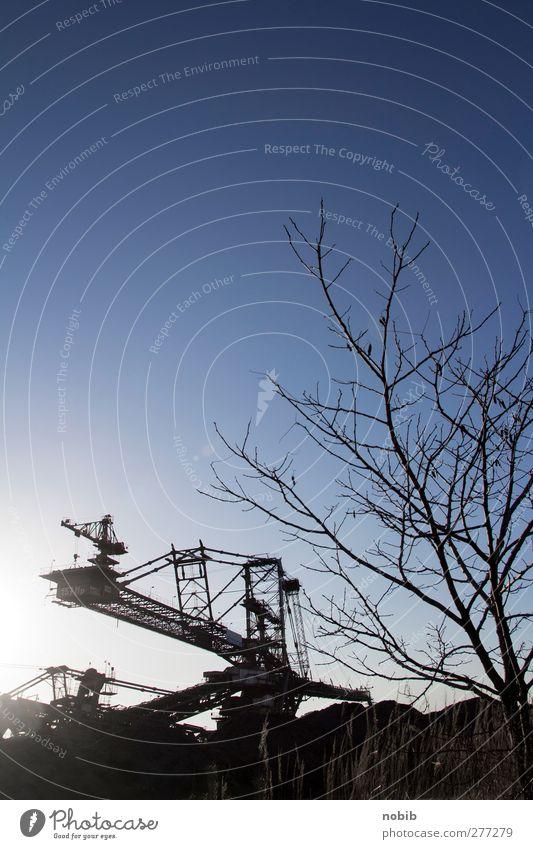 Kohlebagger Himmel Natur Sonne Landschaft Holz Stein Erde Energiewirtschaft Wachstum Industrie bedrohlich Technik & Technologie Stahl Zukunftsangst Wirtschaft