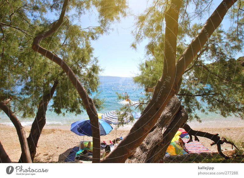 mala luka Mensch Ferien & Urlaub & Reisen Sommer Baum Sonne Meer Strand Ferne feminin Spielen Freiheit Küste Menschengruppe Schwimmen & Baden Wellen Freizeit & Hobby