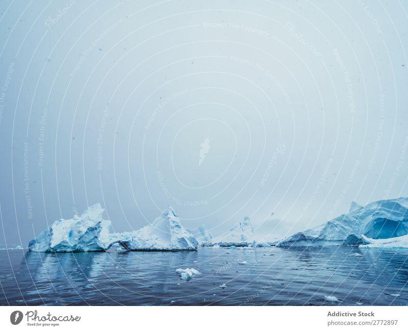 Gletscher im Meer Wand Eis Pinguin Eisberg Landschaft dramatisch Umwelt riesig Beautyfotografie Wasser polar Norden Arktis Ferien & Urlaub & Reisen Natur