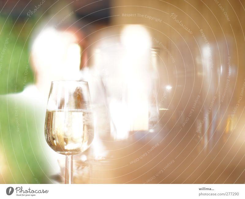 gefülltes sektglas bei einer gartenparty Getränk Alkohol Sekt Prosecco Feste & Feiern Glas braun grün weiß Gartenfest Unschärfe Sektglas Weinglas