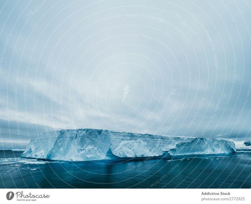 Gletscherwall im Meer Wand Eis Pinguin Eisberg Landschaft dramatisch Umwelt riesig Beautyfotografie Wasser polar Norden Arktis Ferien & Urlaub & Reisen Natur