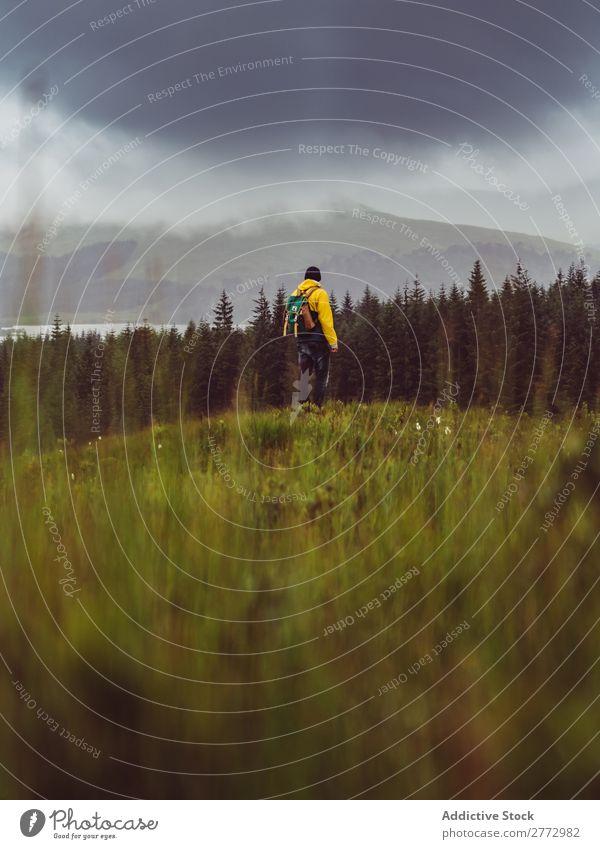 Backpacker im ländlichen Bereich Mann Wald Wolkendecke Mensch Rucksacktourismus Landschaft Aussicht