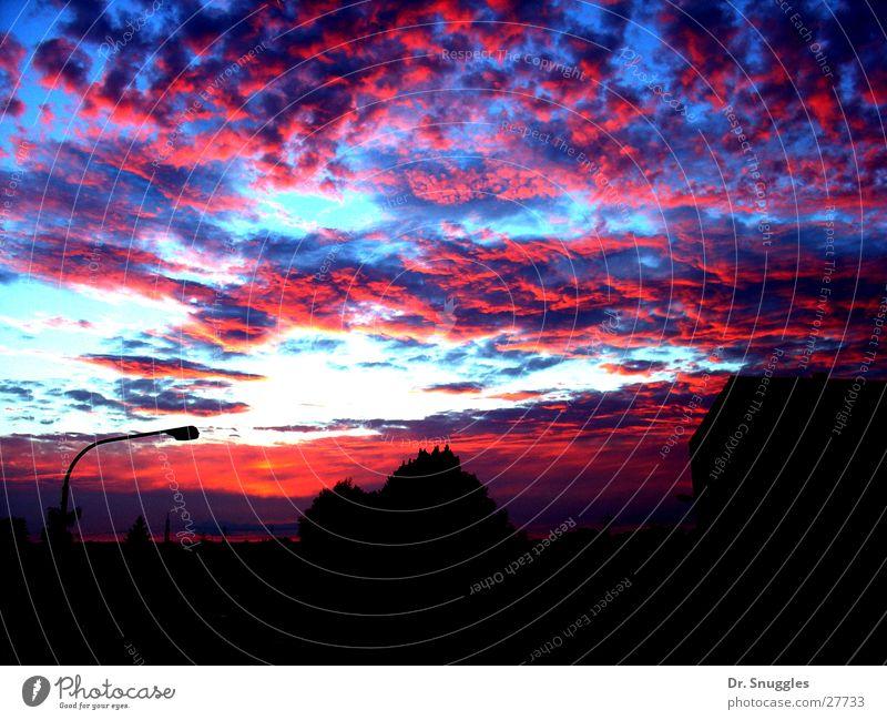 Himmliches Farbenspiel 2 Himmel weiß blau rot Wolken Lampe Horizont Straßenbeleuchtung Sommerabend Rheinland-Pfalz Wörth am Rhein