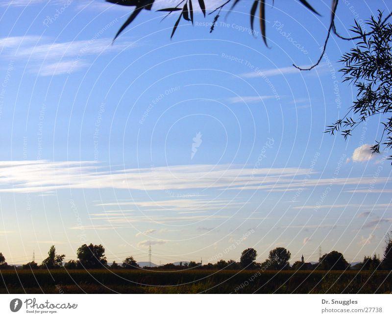 blaue Weite Himmel blau Wolken Ferne Landschaft frei leer Dorf Rheinland-Pfalz Rheinebene