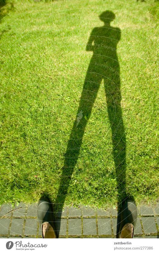 Schatten im Gras Garten Schrebergarten Kleingartenkolonie Mann Mensch Dämmerung Sonnenuntergang Fuß Wege & Pfade Gartenweg Rasen Sportrasen Wiese grün