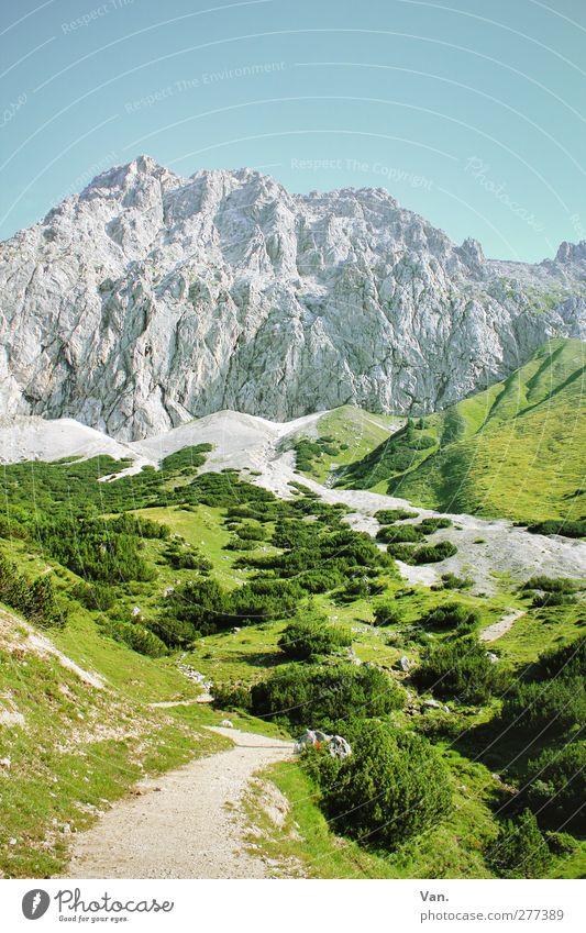 Do geht's nauf! Ferien & Urlaub & Reisen Ausflug Berge u. Gebirge wandern Natur Landschaft Pflanze Himmel Wolkenloser Himmel Sommer Schönes Wetter Gras